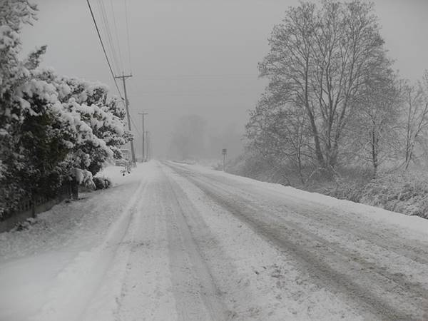 Snowy conditions)